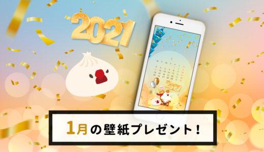 2021年1月小籠包文鳥壁紙カレンダープレゼント!
